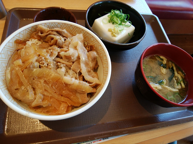 すき家 486号井原店 豚丼 健康セット